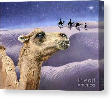 Camel Drawings Canvas Prints