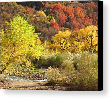 Reds Of Autumn Photographs Limited Time Promotions