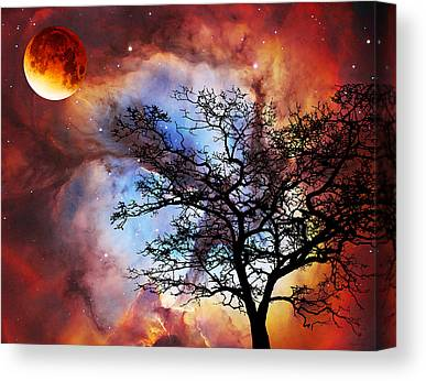 Stargazing Canvas Prints
