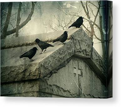 Crows Mingling Canvas Prints