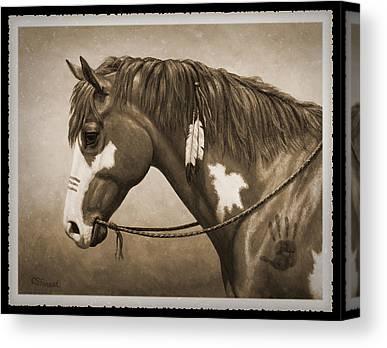Chestnut Paint Horse Canvas Prints