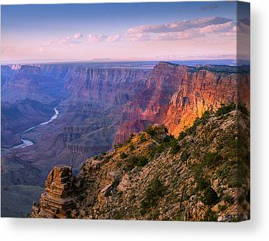 Throw Canvas Prints