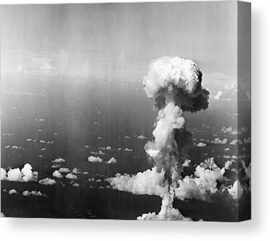Destruction Island Canvas Prints