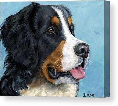 Bernese Mountain Dogs Canvas Prints