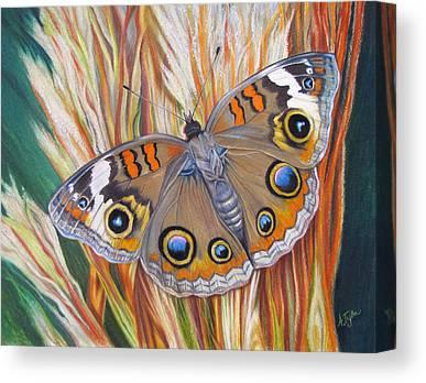 Buckeye Butterfly Canvas Prints