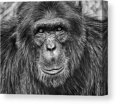Uganda Canvas Prints