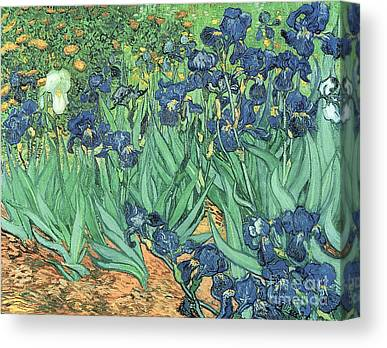 Garden Canvas Prints