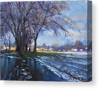 Snow Melt Canvas Prints
