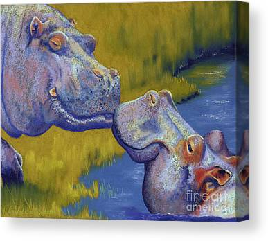 Hippos Canvas Prints