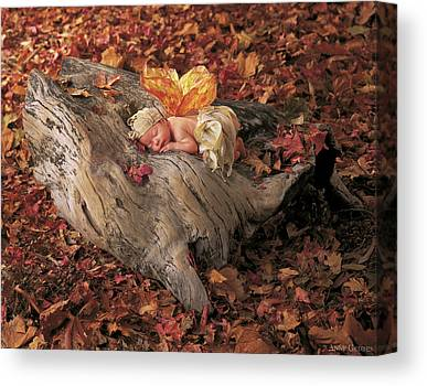 Fairies Photographs Canvas Prints