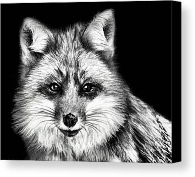 Fox Paintings Limited Time Promotions