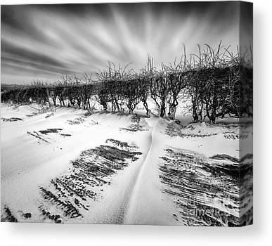 Drifting Snow Photographs Canvas Prints