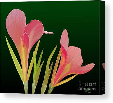 Canna Lillies Paintings Canvas Prints
