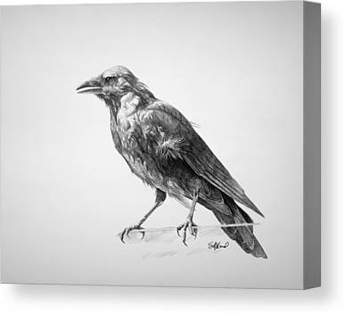 Black Crow Canvas Prints
