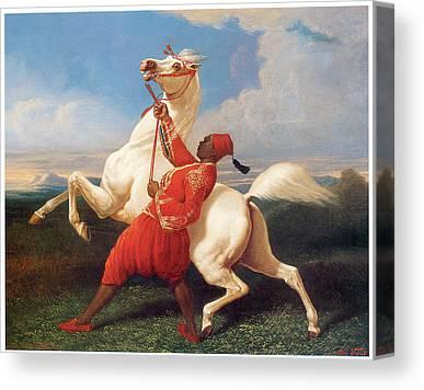 White Stallion With Rider Canvas Prints