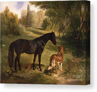Companions Canvas Prints
