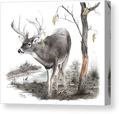 Brad Farris Drawings Canvas Prints