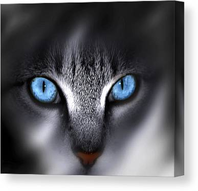 Blue Eyes Canvas Prints