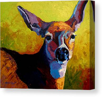 Whitetail Deer Canvas Prints
