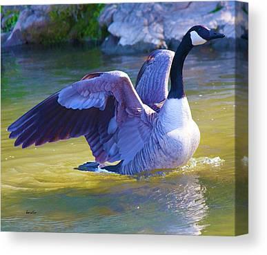 Geese Digital Art Canvas Prints