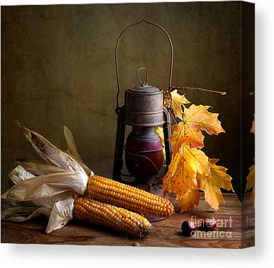 Corn Canvas Prints