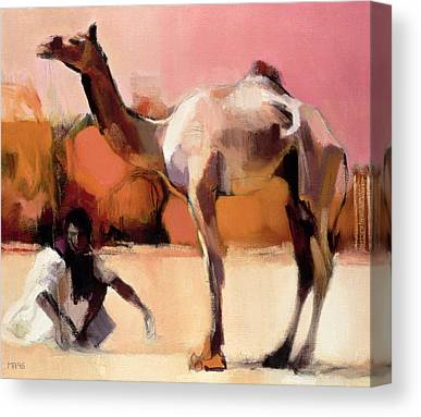 Camel Canvas Prints