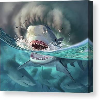 Tiger Sharks Canvas Prints