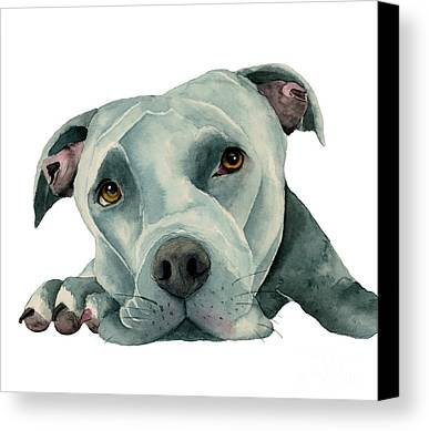 Watercolor Pet Portraits Limited Time Promotions
