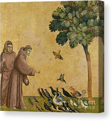 Giotto Di Bondone Canvas Prints