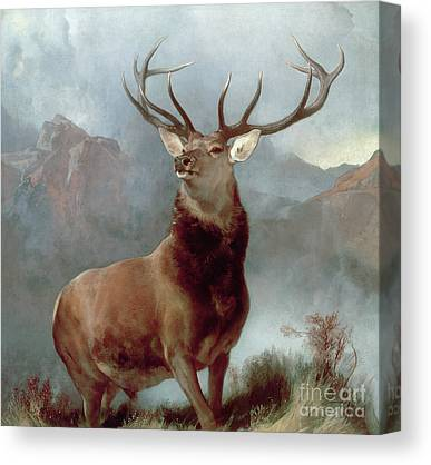 Reindeer Canvas Prints