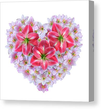 Fairy Hearts Pink Flower Canvas Prints