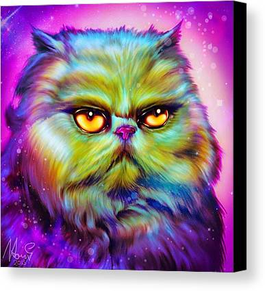 Pet Mixed Media Limited Time Promotions