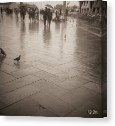 Piazza San Marco Canvas Prints