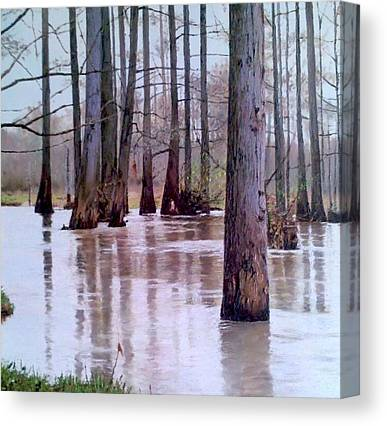 Bottomlands Paintings Canvas Prints