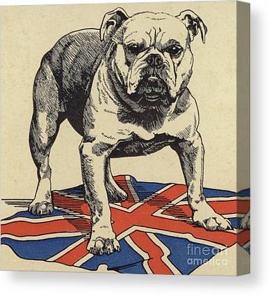 English Drawings Canvas Prints