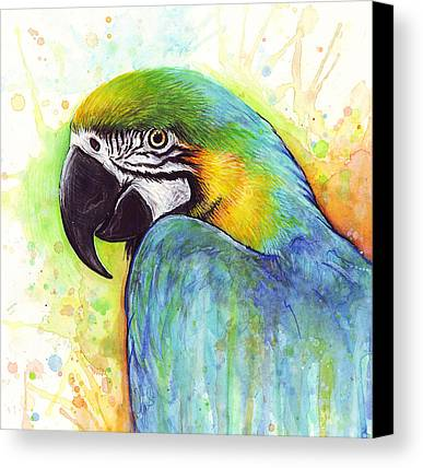 Macaw Canvas Prints