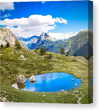 Wilderness Canvas Prints