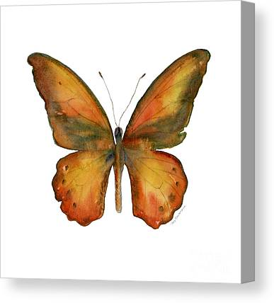 Orange And Brown Wings Canvas Prints