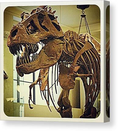 Tyrannosaurus Canvas Prints