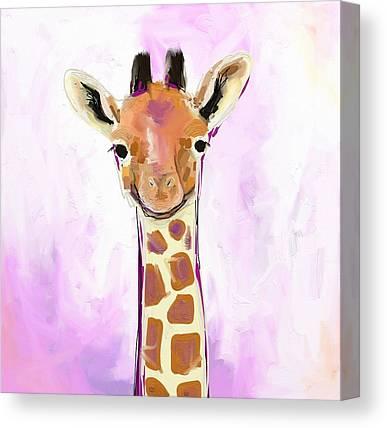 Giraffes Canvas Prints
