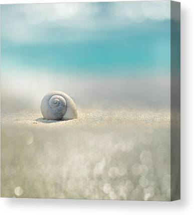 Florida House Canvas Prints