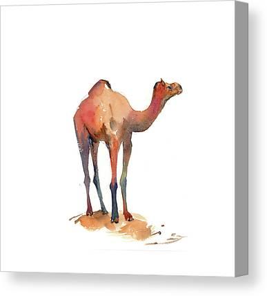 Camel Canvas Prints