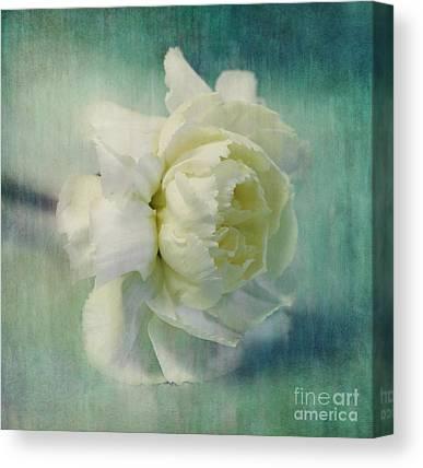 Blumen Canvas Prints
