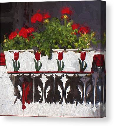 Red Geraniums Canvas Prints