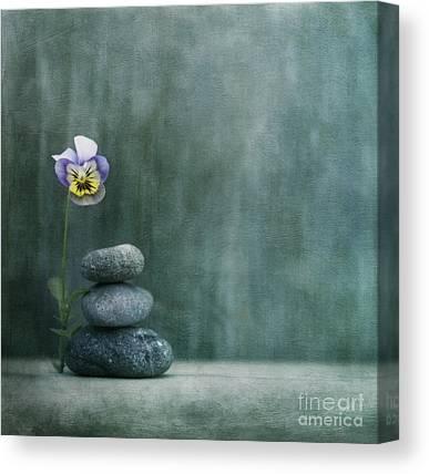 Nature Still Life Photographs Canvas Prints