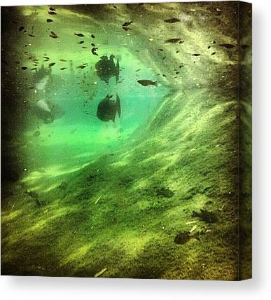 Underwater Canvas Prints