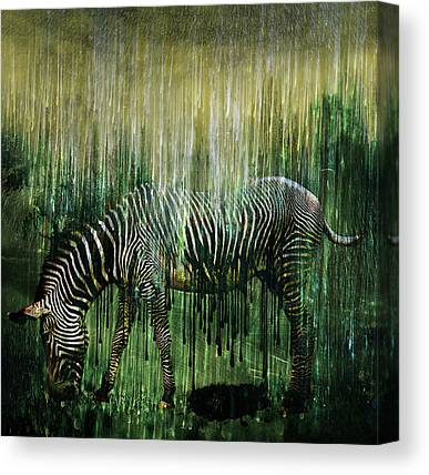 Feeding Mixed Media Canvas Prints