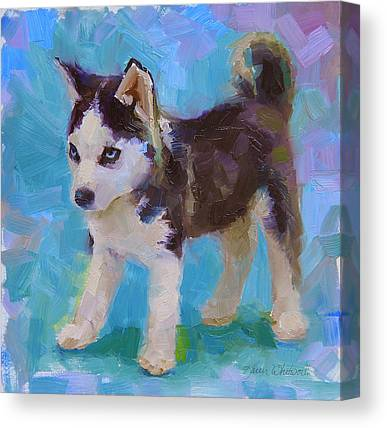 Huskie Canvas Prints