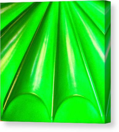 Limes Canvas Prints
