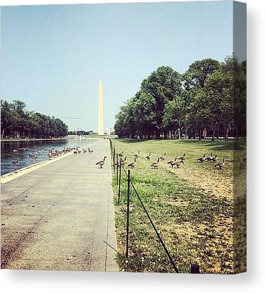 Washington Monument Canvas Prints